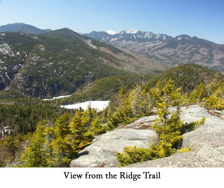 Ridge Trail web