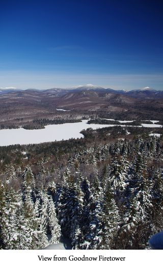 View from Goodnow web
