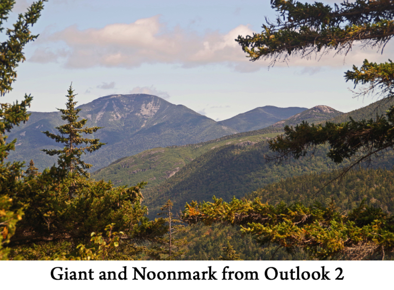 Giant and Noonmark web