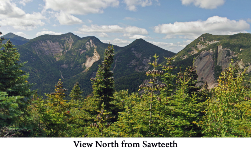 View from Sawteeth web