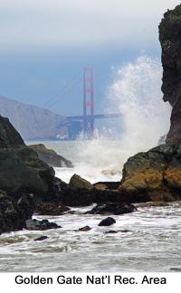 Golden Gate web