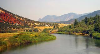Colorado River web 3