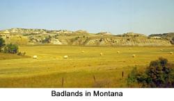 Montana web 1