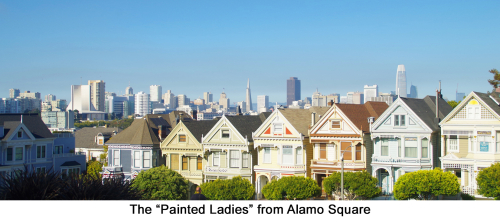 Painted Ladies web