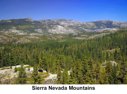 Sierra Nevada web