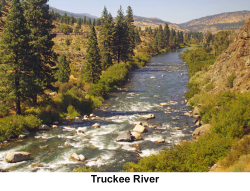 Truckee River web 1